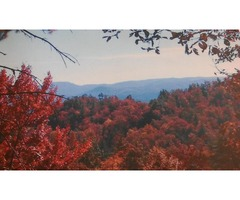 1.86 Acres in Wilkes County - Beautiful Mountain Views
