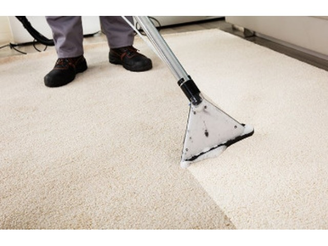 Image result for long beach carpet cleaning