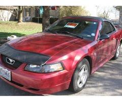 40th. Anniversary Mustang 2004