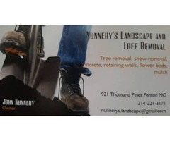 Landscape, Tree Removal, Concrete, Landscaping