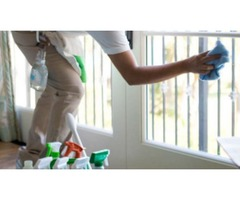 Deluxe Window Cleaning and Home Services