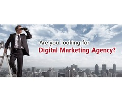Are you looking for a professional Digital Marketing Agency in California, USA?