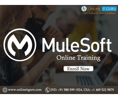 mulesoft online training  and placements for low price