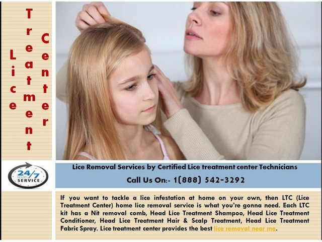 Lice Removal Service by Certified Lice treatment center Technicians | free-classifieds-usa.com
