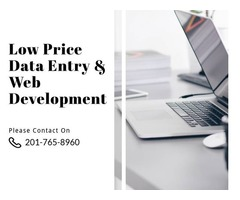 Data Entry, Web Development & Mobile App Development