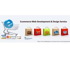 Ecommerce Web Development & Design Service