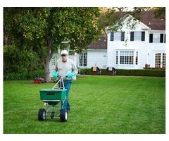 Lawn Mowing Cumming