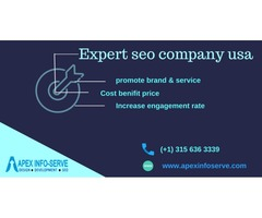 Expert SEO Company USA | Choose Apex Info-Serve