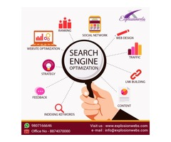 Web Development Company offering, SEO, SMO & PPC Services