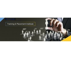 IT TRAINING, MARKETING AND JOB PLACEMENT