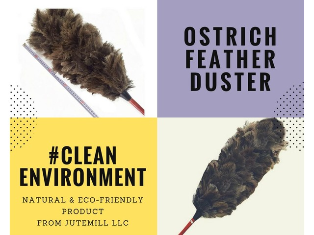 Best Eco Friendly And Natural Ostrich Feather Duster