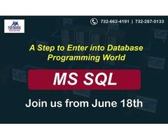 MS SQL Session Starts On June 18th @ 08:30 PM EST (Edison)