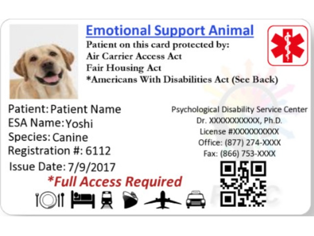 reliable service animal letter provider - pdsc - pet services
