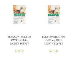 Cat Pet Food shop Online