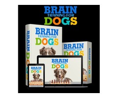 Lets help You Train Your Dog Online