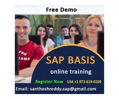 SAP BASIS online training Interested people Attend live free Demo.