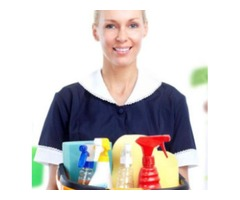Sonia D Cleaner Service Company