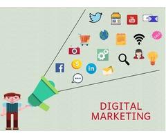Best Digital Marketing Company in USA