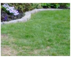 Empire Landscaping Associates, Inc