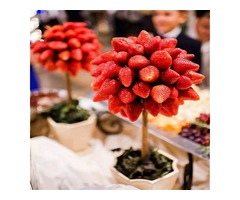 Egrow 100 Pcs/Pack Strawberry Tree Seeds Rare Fruit Strawberry Bonsai Seed Garden DIY Planting | free-classifieds-usa.com