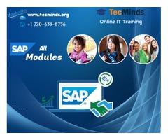 SAP Online Training I USA
