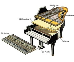 Illinois Piano Tuner | free-classifieds-usa.com