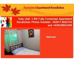 1 Bedroom Furnished Long Term Rental in Novaliches, Quezon City, Philppines +639175623143