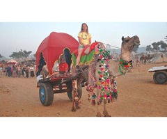 India Travel Packages Booking Now