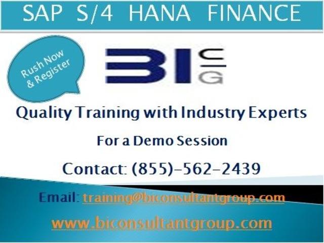 S/4 HANA Simple Finance Online Training | free-classifieds-usa.com