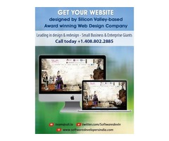Silicon Valley's Top Web Design and Development Company