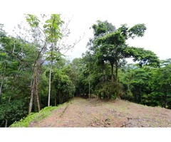 Great space with breathtaking view for sale in Uvita