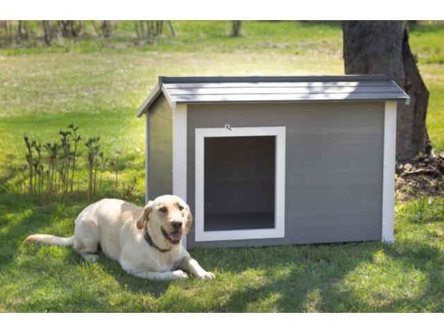 Take home the super insulated canine cabin dog house. | free-classifieds-usa.com