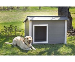 Take home the super insulated canine cabin dog house.