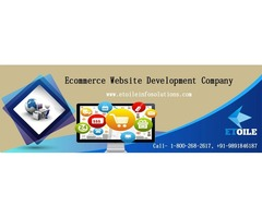 For Designing Ecommerce Sites, Contact The Web Guru, Etoile Info Solutions!