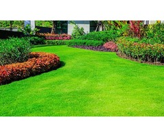 lawn care east dundee il