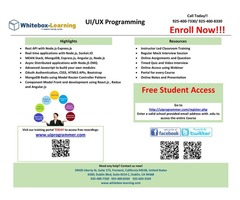 UI/UX Programming and QA (Quality Assurance) / QE (Quality Engineering) | free-classifieds-usa.com
