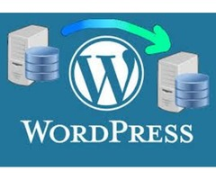 Cutting-Edge Wordpress Development Services Agency in the USA