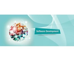 Software consultant & development Company