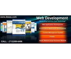 Website Development Services in Houston