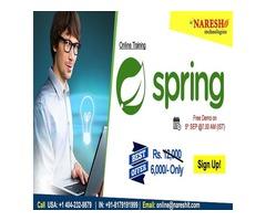 Spring Online Training in USA - NareshIT