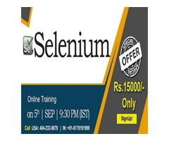 Selenium Online Training in USA - NareshIT