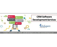 CRM Software Development Services USA