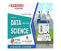Diploma in Data Science Online Training in USA - NareshIT