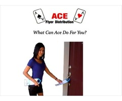 Ace Flyer Distribution over 36 Years in Business And Open No with a Free Quote