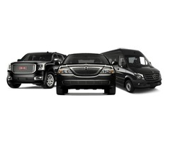 Limo Service provides