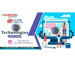 UI Technologies Online Training in USA - NareshIT