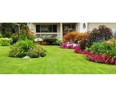 Commercial and Residential Lawn Service
