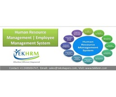 Human Resource Management | Employee Management System