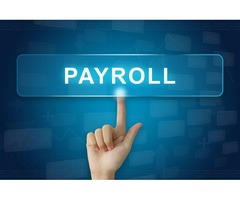 Payroll Services Tampa