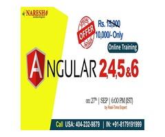 Angular 2, 4, 5 and 6 Online Training Institute in USA  - NareshIT
